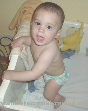 fimosis en bebés copy