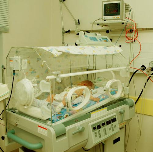 ¿Cómo funcionan las incubadoras?