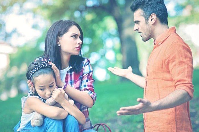 Características de las familias narcisistas