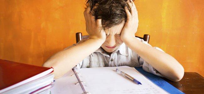 tarea escolar